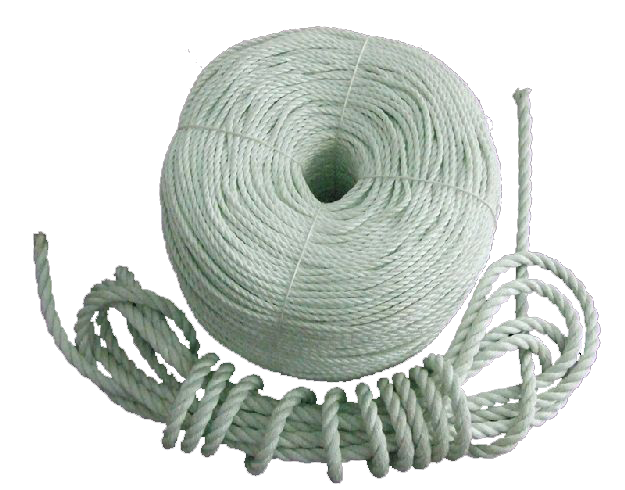 Photoluminescent Rope Image