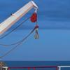 Liferaft Release Hook PX02
